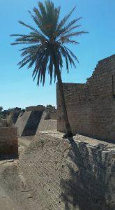 החפיר והחלקלקה של קיסריה הצלבנית מימי לואי התשיעי.