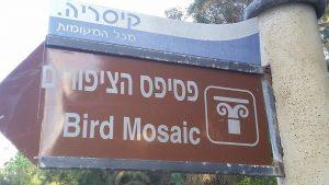 פסיפס הציפורים