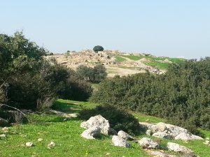 נוף חורבת בורגין בשפלת יהודה