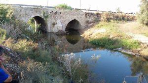גשר ג'ינדס בלוד