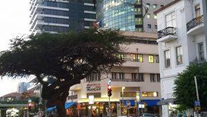 סיור ברחוב רוטשילד תל אביב