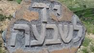 אלי כהן 3