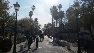 רחוב המייסדים זכרון יעקב
