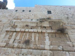 ירושלים קשת דווידסון