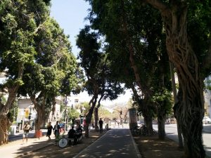 שדרות רוטשילד תל אביב