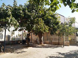 סיור בגן התות בנחלאות-ירושלים